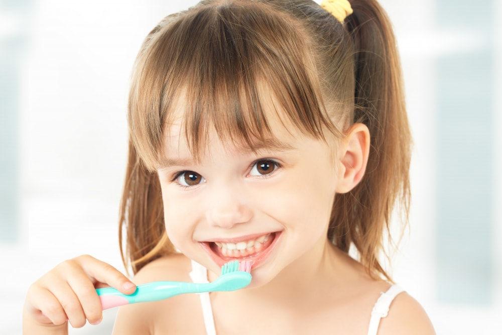 Why Brushing the Teeth Twice a Day Is Essential